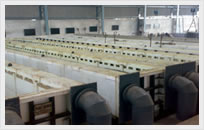 Manufacturing of Picklink Tanks Under Process Image